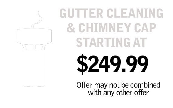 Gutter Cleaning and Chimney Cap $99